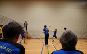 Volleyball Bild Spiel